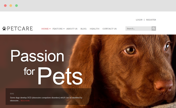 Petcare - Amusing Blog & Magazine Joomla Template